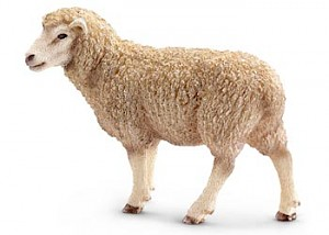 SC13743 Schleich – Sheep