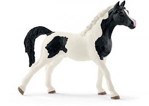 SC13840 Schleich - Pintabian Stallion