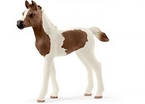 SC13839 Schleich - Pintabian Foal