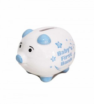 Baby's First Money Bank - Blue