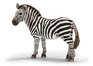 SC14392 Schleich - Zebra Female