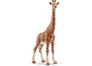 SC14750 Schleich – Giraffe Female