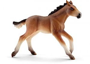 SC13807 Schleich – Mustang Foal
