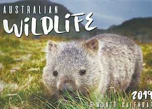 2019 Australian Wildlife 16 Month Calendar #CAL19029