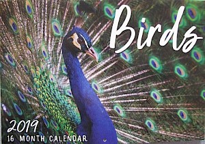 2019 Birds 16 Month Calendar #CAL19020
